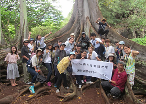 "International students at the famous ""Jurassic Tree"" in Allerton Gardens"